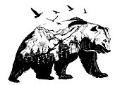 Hand drawn bear for your design, wildlife concept