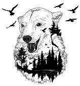 Hand drawn bear portrait for your design, wildlife concept