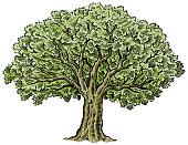 Hand drawn big tree vector