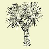 Hand drawn black and white single palm tree