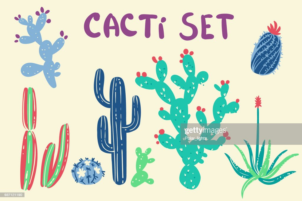 Hand drawn cactus and succulent plants illustration