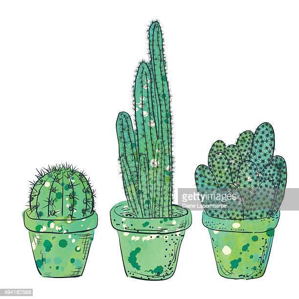 ilustrações, clipart, desenhos animados e ícones de desenho à mão com aquarela cactus - cacto