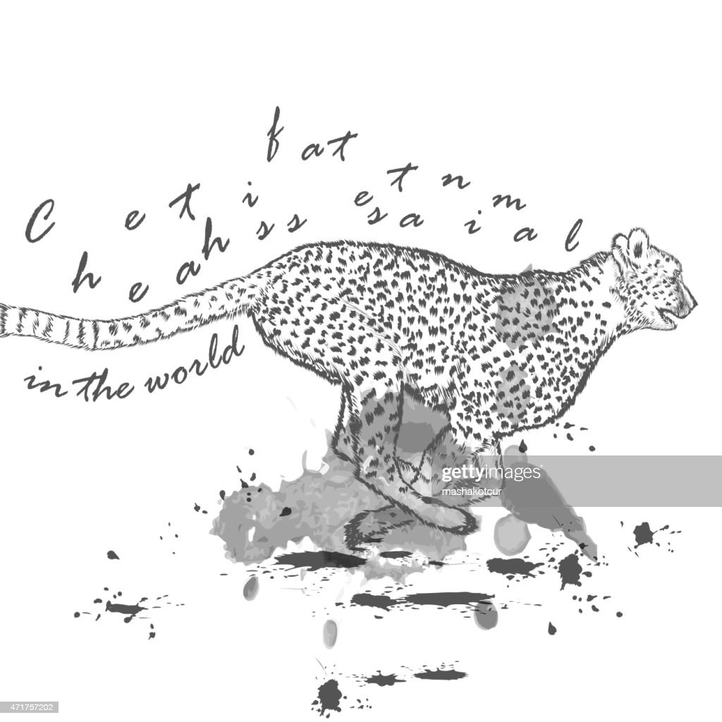 Hand drawn cheetah animal running with ink spots