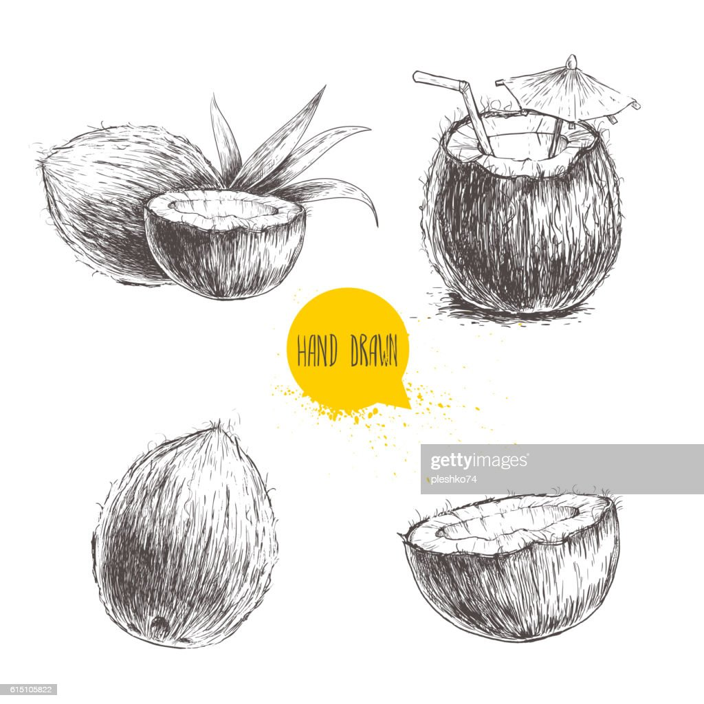 Hand drawn coconut set. Cocktail isolated on white background.
