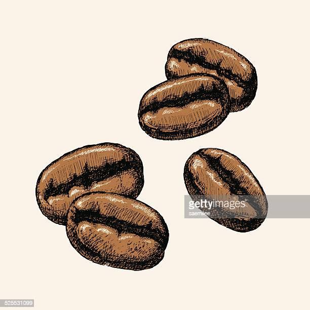 Hand Drawn Coffee Beans