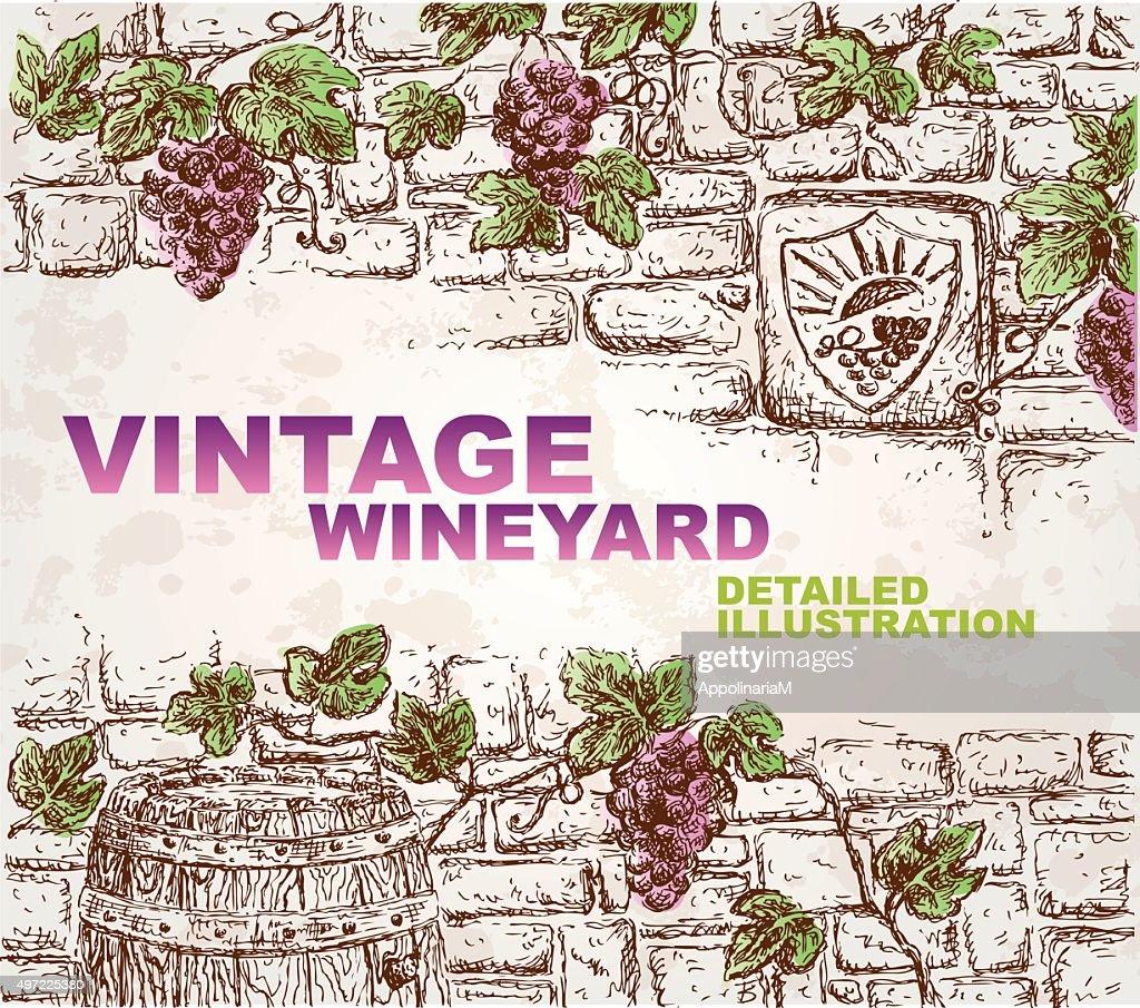 Hand Drawn Detailed Vignette, Suitable for Wine List, Menu etc.