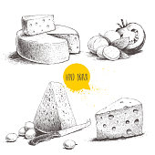 Hand drawn different type of cheese set