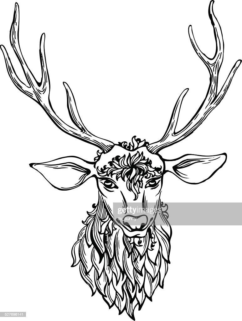 Hand drawn doodle deer