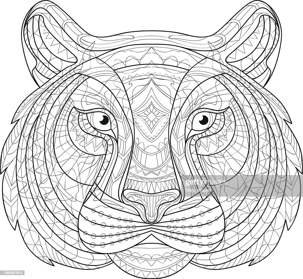 Hand drawn doodle outline tiger illustration. Decorative in African indian