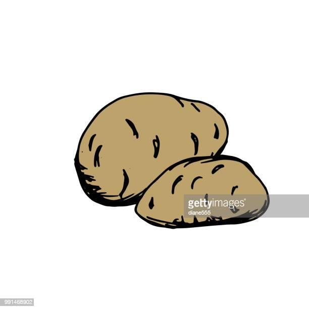 Hand Drawn Doodled Element - Potato