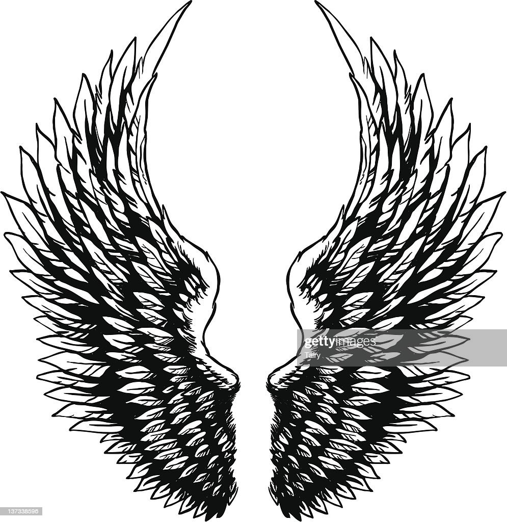 Hand drawn eagle wings