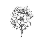 Hand drawn flower bouquet