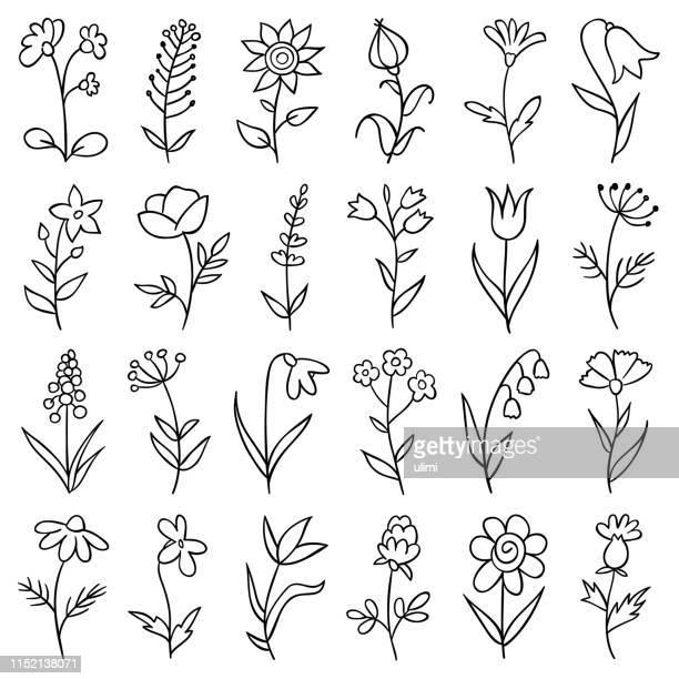 stockillustraties, clipart, cartoons en iconen met hand getekende bloemen - flowers