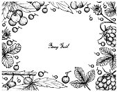 Hand Drawn Frame of Arctic Bramble and Allophylus Edulis Berries