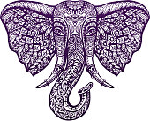 Hand drawn front view head elephant with ornament. Vector illustration
