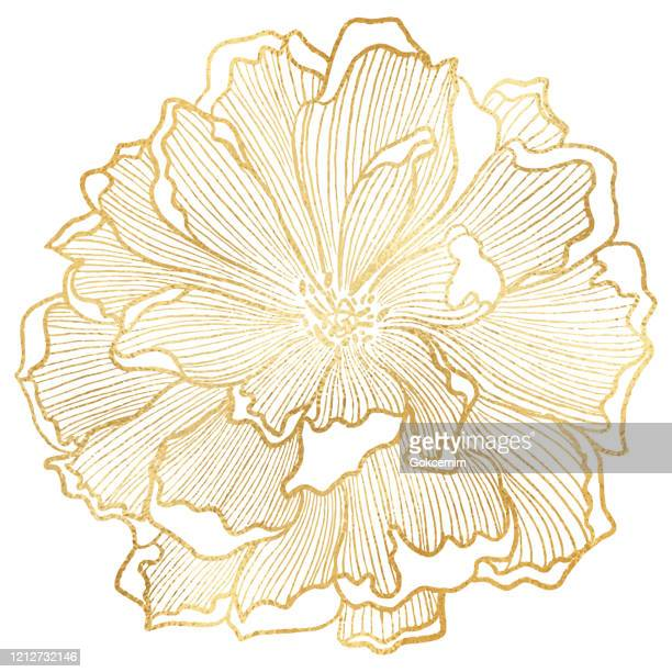 hand drawn gold foil peony flower background. elegant design element for greeting cards (birthday, valentine's day), wedding and engagement invitation card template. - stencil stock illustrations