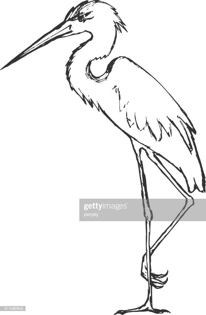 hand drawn, grunge, sketch illustration of heron