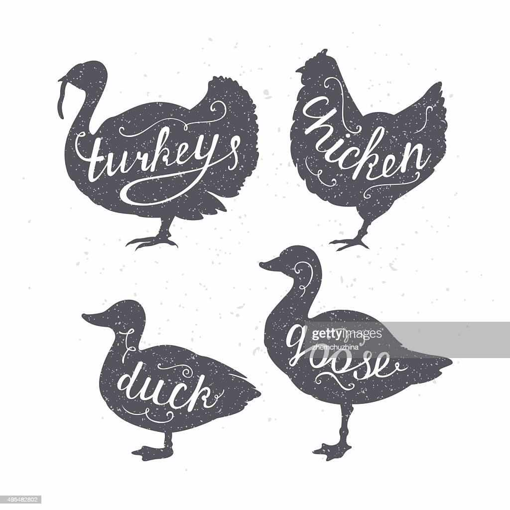 Hand drawn hipster farm birds silhouettes. Chicken, turkey, goose, duck