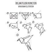 Hand Drawn Illustration Step By Of Pigeon Origami