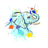 hand drawn illustration with color elephant. design for poster, print, t-shirt, flyers. sketch. vector eps 8.