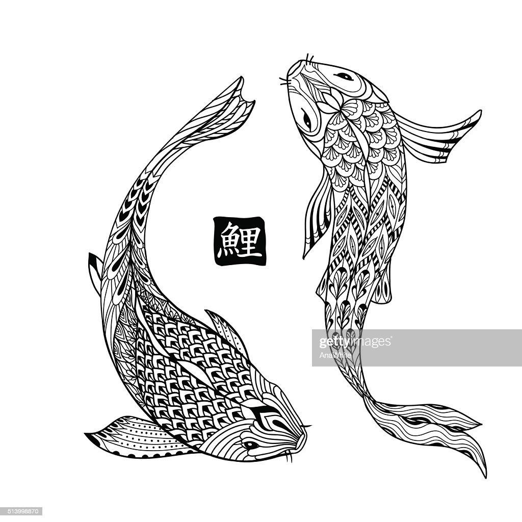 Hand drawn koi fish. Japanese carp line for coloring book