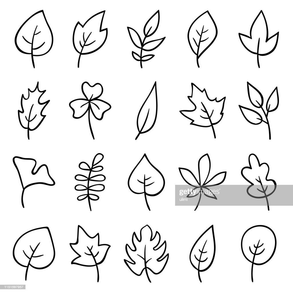手描きの葉 : ストックイラストレーション