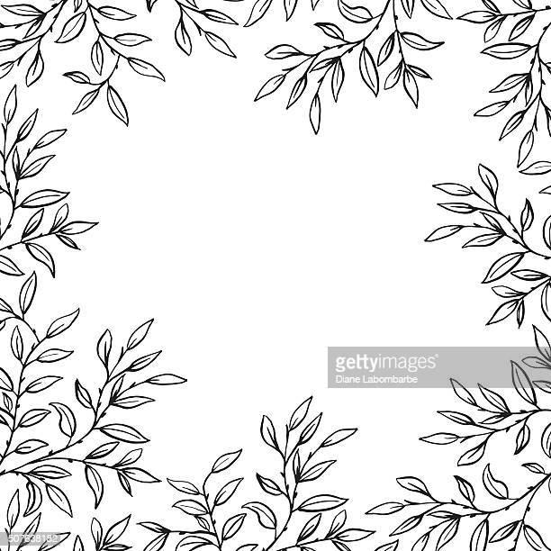 hand drawn leaves vines frame - vine plant stock illustrations
