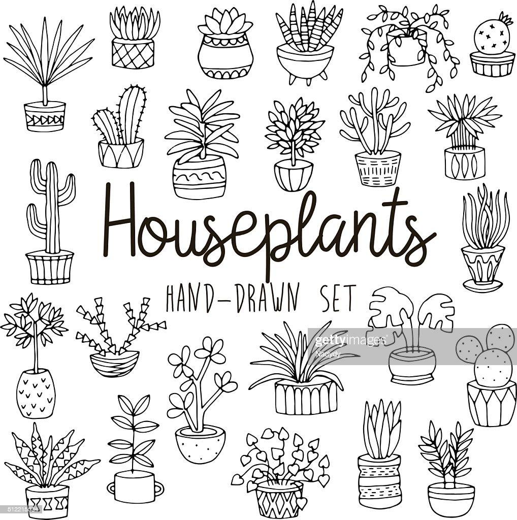 Hand drawn line set of houseplants in pots