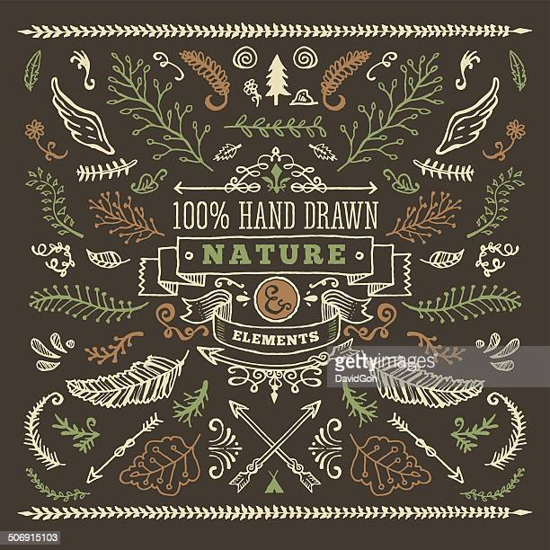 hand drawn nature elements - ornate stock illustrations, clip art, cartoons, & icons