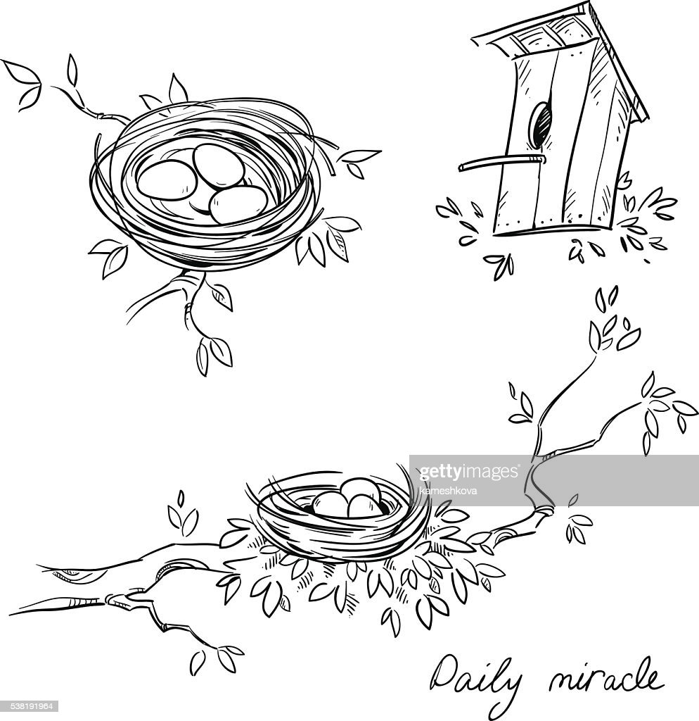 Hand drawn nests and a birdhouse