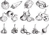 Hand drawn onion, pepper and garlic.