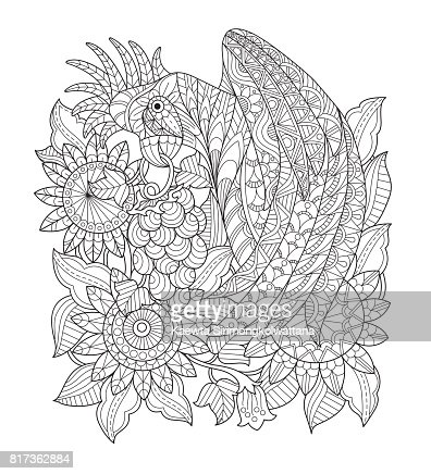 Hand Drawn Parrot In The Sunflower Garden For Adult Coloring Page Vector Art