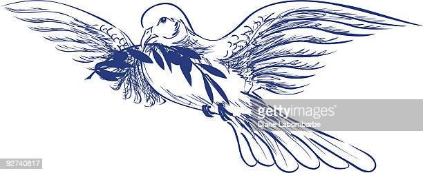 ilustraciones, imágenes clip art, dibujos animados e iconos de stock de dibujados a mano estilo pluma tinta & dove medio - rama de olivo