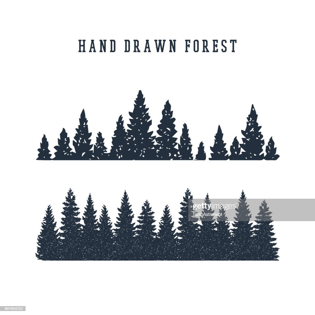Hand drawn pine forest vector illustration.