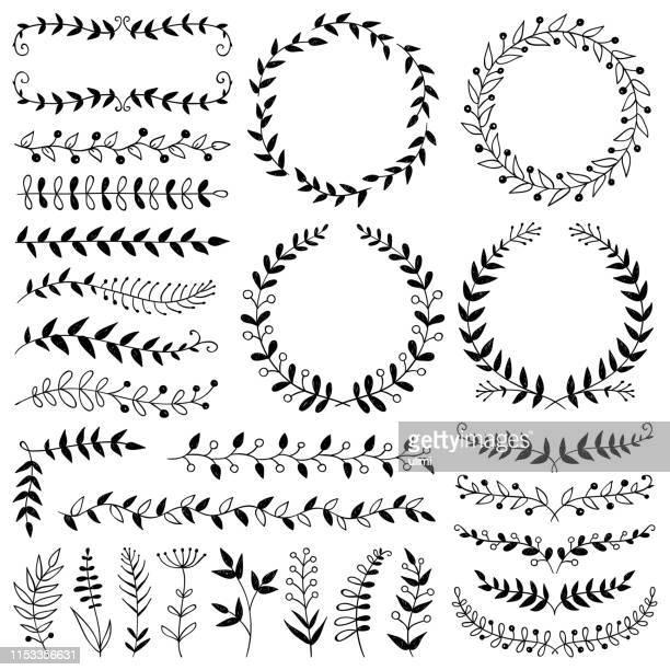 stockillustraties, clipart, cartoons en iconen met hand getekende planten, verdelers, kransen, border frames - twijg