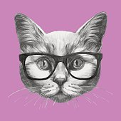 Hand drawn portrait of Cat with glasses.