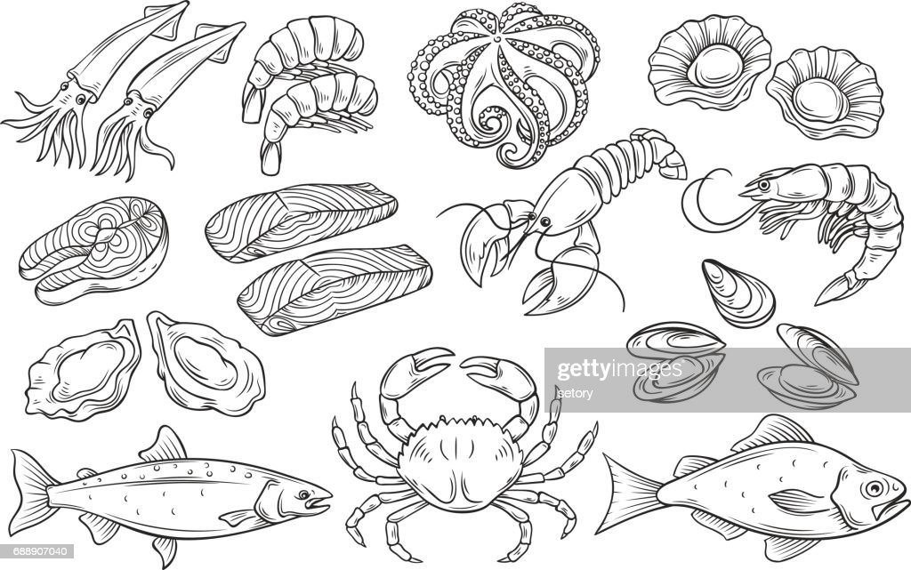 Hand drawn Seafood set