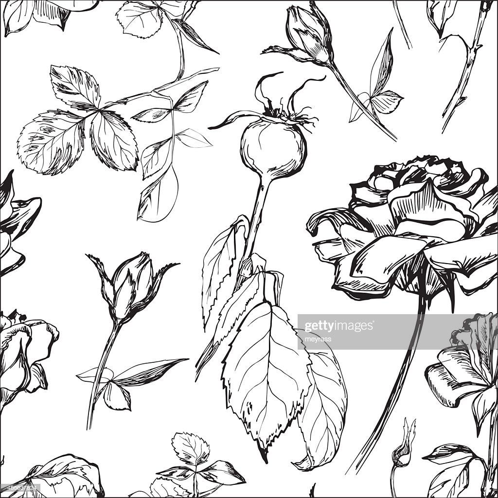 Hand drawn seamless pattern of roses, buds and leafs
