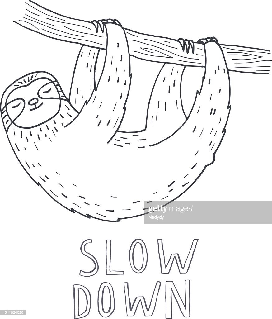Hand drawn sloth on tree branch