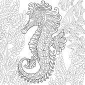 Hand drawn stylized seahorse