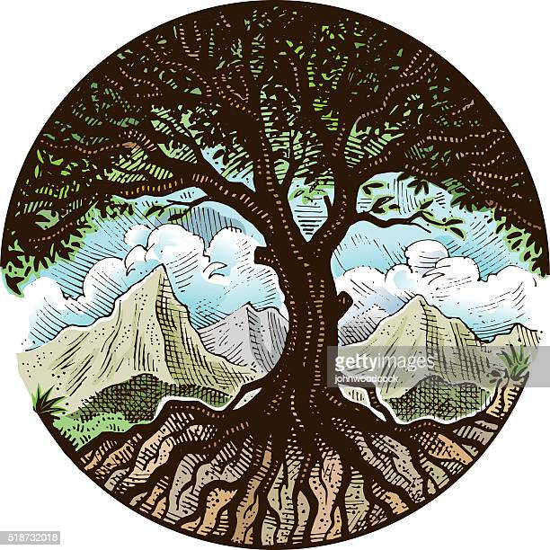 hand drawn tree illustration - root stock illustrations, clip art, cartoons, & icons