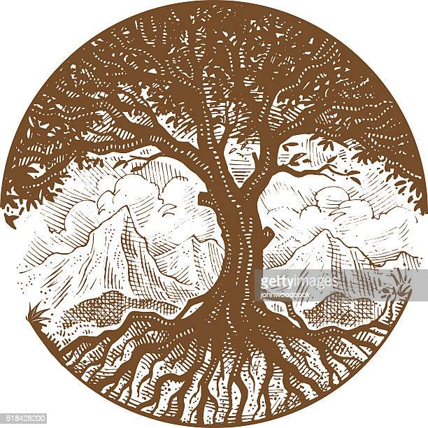 hand drawn tree - root stock illustrations, clip art, cartoons, & icons