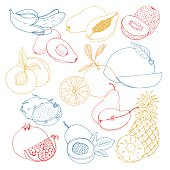 hand drawn vector illustration, a set of exotic fruits