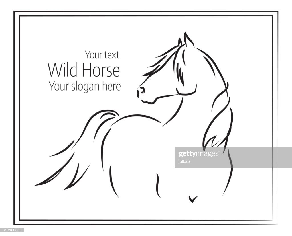 Hand drawn vector illustration of wild horse