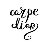Hand drawn vector lettering phrase. Modern motivating calligraphy decor for wall, poster, prints, cards, t-shirts and other