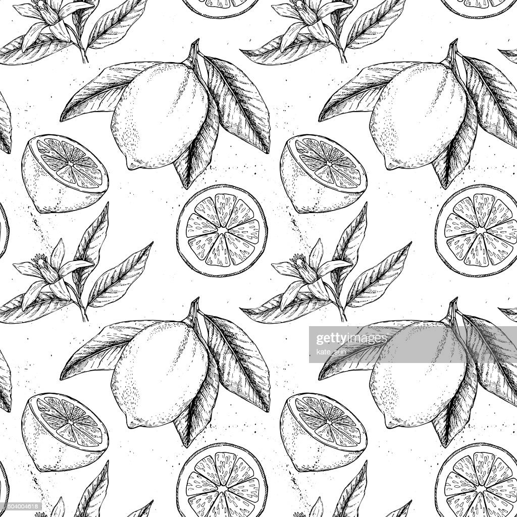 Hand drawn vector seamless pattern. Collections of Lemons.