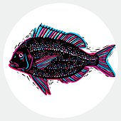 Hand drawn vector simple fish isolated, seafood