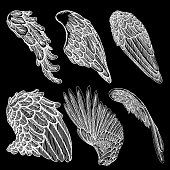 Hand drawn vintage angel or bird wings set. Heraldic wings for tattoo and mascot design. Isolated sketch collection vector.