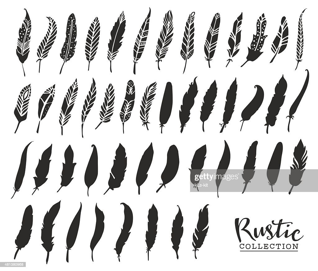 Hand drawn vintage feathers. Rustic decorative vector