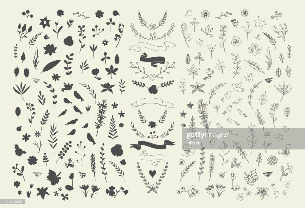 Hand Drawn vintage floral elements. Set of flowers. Decorative elements